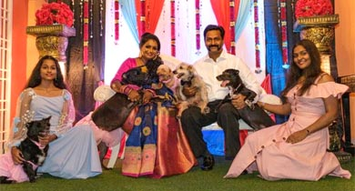 Mahadevan and Vanitha Matrimony Success Story